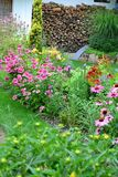 Beautiful summer border full of ornamental plants. Beautiful summer border full of grasses, perennials, conifers and shrubs stock images