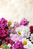 Beautiful summer bouquet Royalty Free Stock Photos