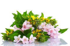 Beautiful summer bouquet Royalty Free Stock Photography