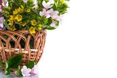 Beautiful summer bouquet in a wicker basket Stock Image