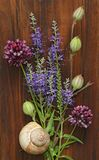 A beautiful summer bouquet, wildflowers, wild onions, Veronica long-leaved violet on a wooden background of black walnut. royalty free stock images