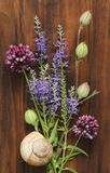 A beautiful summer bouquet, wildflowers, wild onions, Veronica long-leaved violet on a wooden background of black walnut. Minimalism. Beautiful summer stock photos
