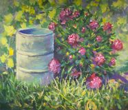 A beautiful summer bush of pions near the barrel in the grass. Original oil painting. Beautiful summer bush of pions near barrel in grass rural landscape royalty free stock images