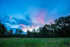 Beautiful summer colorful sunset over green meadow and forest Stock Image