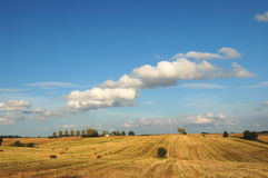 Beautiful summer countryside landscape in Poland Royalty Free Stock Photography