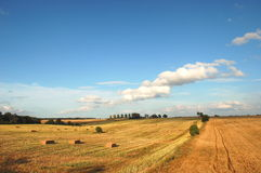 Beautiful summer countryside landscape in Poland Stock Photos