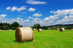 Beautiful summer day Royalty Free Stock Images
