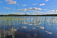 Free Beautiful Summer Day In Norrbotten Royalty Free Stock Images - 68565259