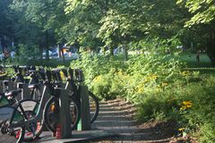 Beautiful Summer Day in Montreal`s Parc Lafontaine royalty free stock photos