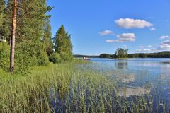 Beautiful summer day in Norrbotten Stock Image