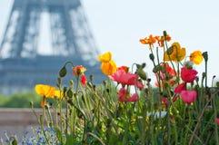 Beautiful summer day in Paris Stock Photo