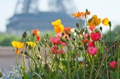 Beautiful summer day in Paris Stock Image