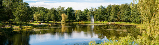 Beautiful summer day in the park Royalty Free Stock Image