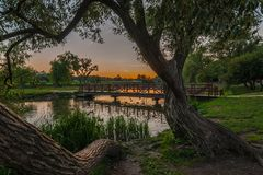 Summer evening landscape. view from the coast with trees on the pedestrian bridge over the river in the city park Royalty Free Stock Images