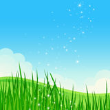 Beautiful summer field landscape. Royalty Free Stock Photos