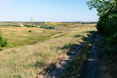 Beautiful summer field road in Ukraine.  Royalty Free Stock Images