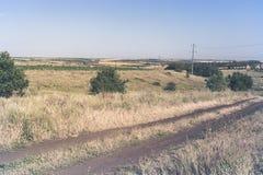 Beautiful summer field road in Ukraine.  Stock Photos