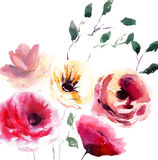 Beautiful summer flowers. Watercolor illustration Stock Photo