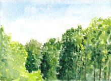 Beautiful summer forest with trees. Green scenic landscape view. Watercolor painting. Hand drawn illustration. Nature background. Royalty Free Stock Images