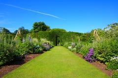Beautiful summer garden Royalty Free Stock Photo