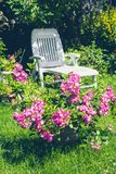 Beautiful summer garden with a white deckchair Stock Image