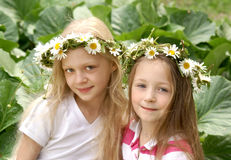 Beautiful summer girls stock photo