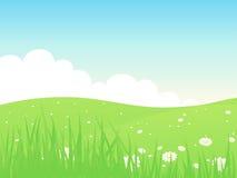 Beautiful summer green field landscape. Beautiful green field landscape with clouds and flowers Stock Image