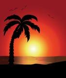 Beautiful Summer holidays landscape background Stock Photos