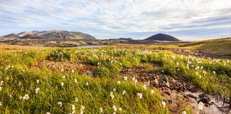 Beautiful summer icelandic landscape panoramic view with grassland, colorful mountain ranges, and beautiful sky as a background. Royalty Free Stock Images