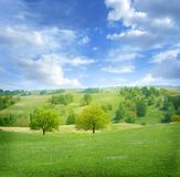 Beautiful summer landscape Stock Image