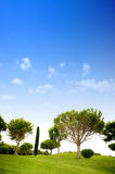 Beautiful summer landscape Royalty Free Stock Photography