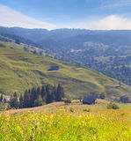 Beautiful summer landscape Royalty Free Stock Images