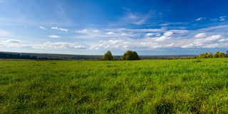 Beautiful summer landscape. The nature. Panorama Stock Images