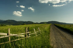 Beautiful summer landscape. In Slovakia Stock Images