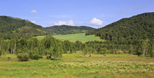 Beautiful summer landscape of Altai Mountains Royalty Free Stock Image