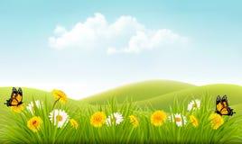 Beautiful summer landscape background. Royalty Free Stock Photography