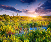Beautiful summer landscape on backwater Stock Photos