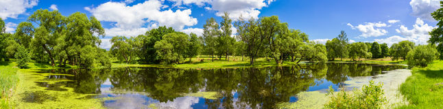 Beautiful summer landscape, Belarus Stock Image