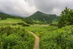 Beautiful summer landscape in the Belianske Tatry Mountains. Slo. Vakia royalty free stock photography