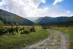 Beautiful summer landscape .Bulgarian mountain Stock Photography