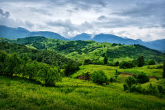Beautiful summer landscape from Buzau, Romania Royalty Free Stock Photos