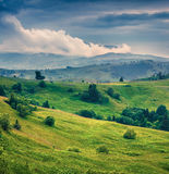 Beautiful summer landscape in the Carpathian mountains Stock Photography