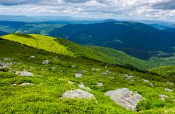 Beautiful summer landscape of Carpathians. Grassy slope with rocks on high altitude in mountains. beautiful summer landscape of Carpathians royalty free stock photography