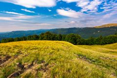 Beautiful summer landscape of Carpathians. Grassy slopes and forested hillsides. Ukrainian alps with Svydovets mountain ridge in the distance Stock Photos