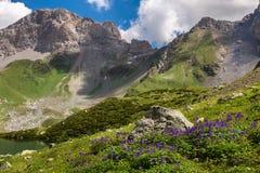 Beautiful summer landscape. Caucasian mountains Stock Photos