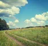 Beautiful summer landscape with a dirt road Stock Images