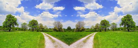 Beautiful summer landscape and dirt road stock images