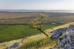 Beautiful summer landscape in Dobrogea region, near Danube delta, Romania. Stock Images