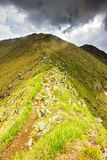 Beautiful summer landscape from Fagaras mountains Royalty Free Stock Photography