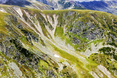 Beautiful summer landscape from Fagaras mountains Stock Images